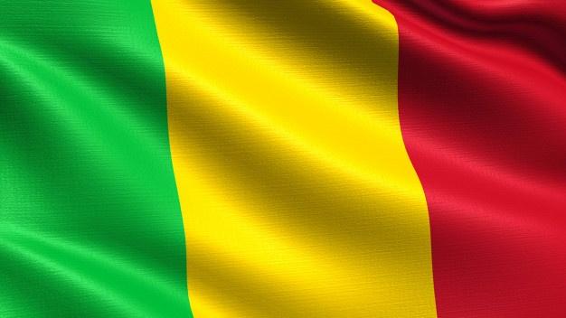 Mali holds election despite coronavirus, Insurgency