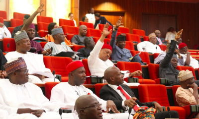 BREAKING: Senators donate 50% of their salaries to fight against COVID-19