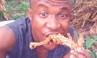 Frog meat heals impotence in men– Nigerian man (photos)