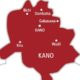 Covid-19: Kano conducts 8,273 sample tests
