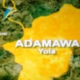 COVID-19: Adamawa denies receiving 42 patients from Gombe