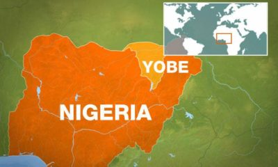 Yobe records 471 deaths within three weeks