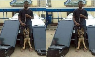 Hilarious! Robber arrested after stealing household items, security Dog guarding the house in Magodo