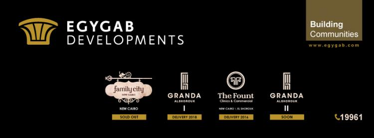 EGYGAB Developments cover photo