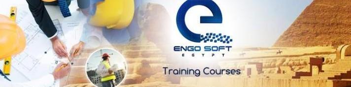 Engosoft cover photo