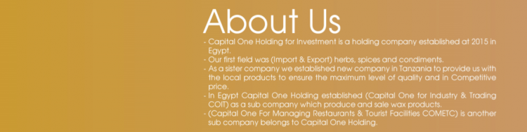 Capital One holding for investment cover photo