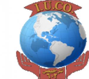 شركة الاتحاد الدولي لإلحاق العمالة Logo