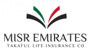 Misr Emirates Insurance Logo