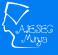 [Teaching] Impact India - Teacher (Sports) at AIESEC Minya