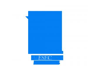 AIESEC Zagazig Logo