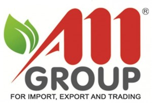 AM Group Logo