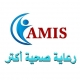 Jobs and Careers at AMIS Egypt