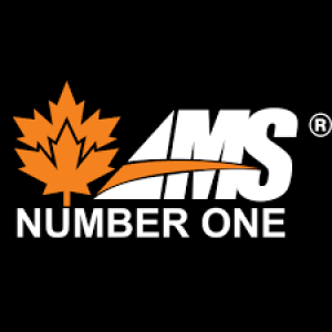 AMS NUMBER ONE Logo