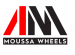 Sales Person - Car Wheels & Tires Sector at Alaa Moussa Association