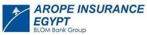 Arope Insurance Blom Bank Group Logo
