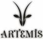 Jobs and Careers at Artemis Egypt