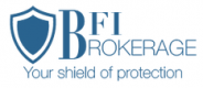 Jobs and Careers at BFI Brokerage Egypt