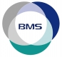 Jobs and Careers at BMS Egypt Egypt
