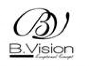 BVision Logo
