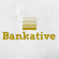 Full Stack Web Developer at Bankative
