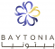Accountant / Saudi Arabia at Baytonia