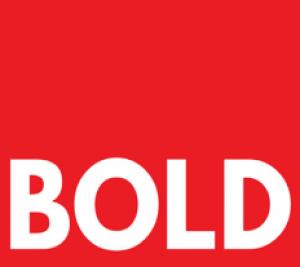Bold Egypt Logo