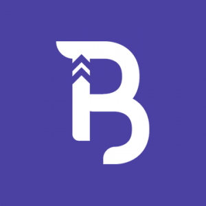 Brandup Logo