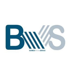 "Business Values Service ""BVS-MEA"" Logo"