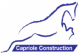 School Manager at Capriole Group