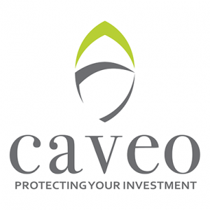 Caveo Financial Services  Logo