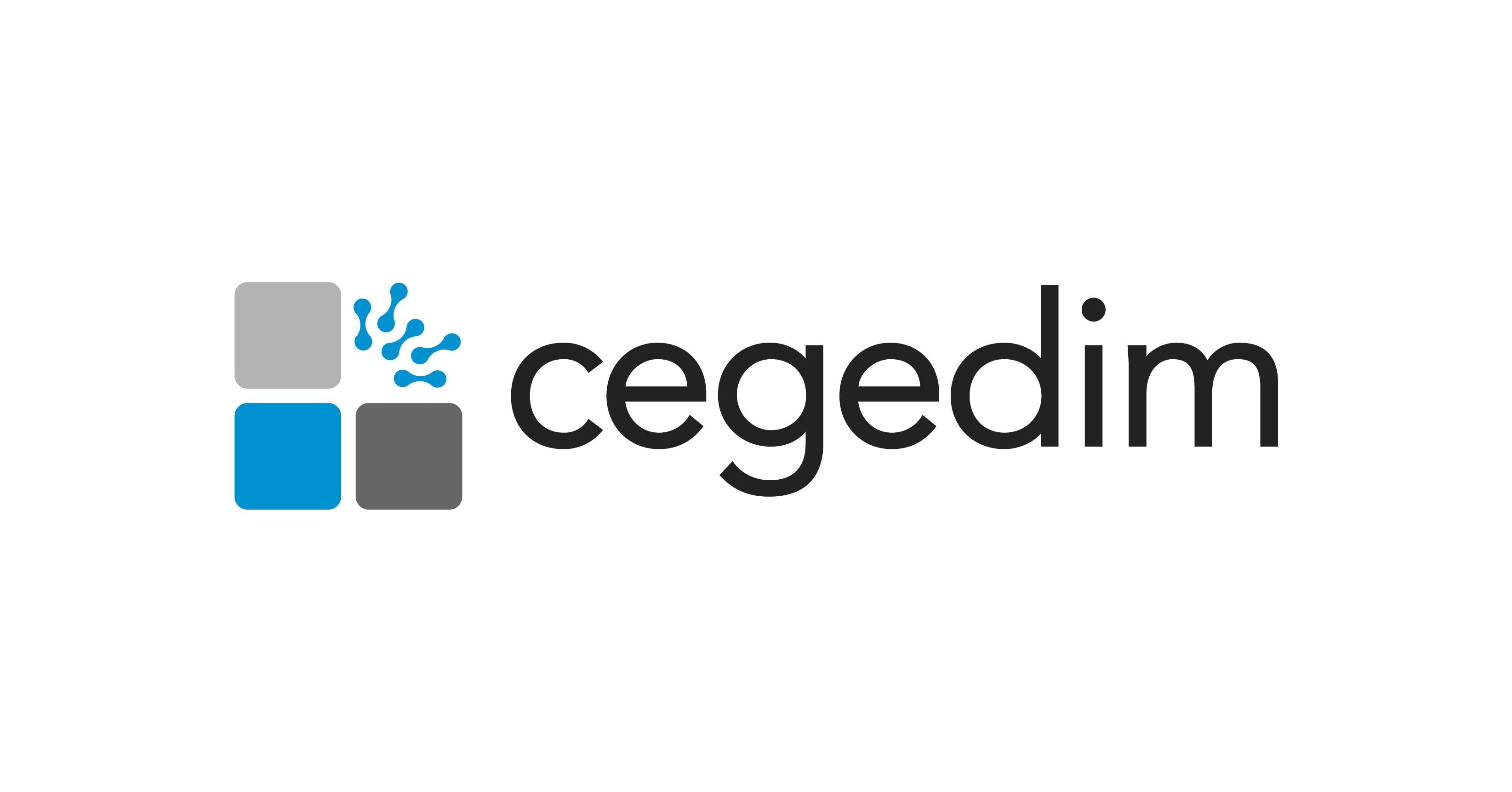 صورة Job: Front-End Java & React Developer- at Cegedim in Cairo, Egypt