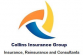 Sales Executive - Banking at Collins Co