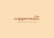 Cost Control Accountant at Coppermelt
