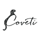 Jobs and Careers at Coveti Egypt
