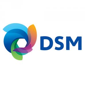 DSM Nutritional Logo