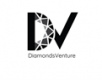 Jobs and Careers at Diamonds Venture Egypt