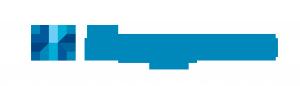 Dsquares Logo