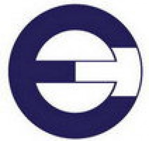 E Group Corp. Logo