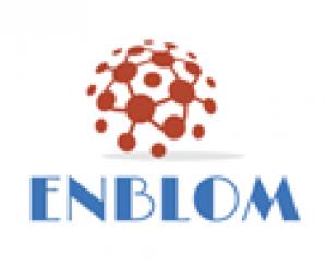ENBLOM  Logo