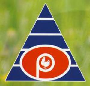 Eddygypt Giordano Poultry Plast. Logo