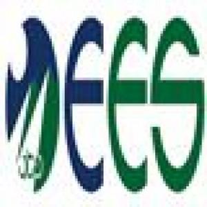 Egypt Environmental Services Logo