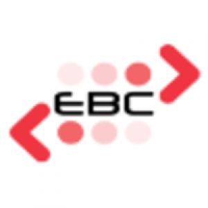 Egyptian Banks Company Logo