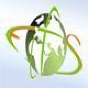 Egyptian Saudi for IT Logo