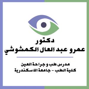 Elkamshoushy eye center Logo