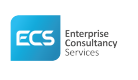 Jobs and Careers at Enterprise Consultancy Services Egypt