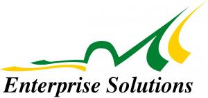 Enterprise Solutions Logo