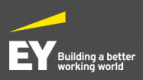 Strategy Consulting Executive - EY Parthenon (Saudi Nationals)