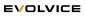 Senior Angular Developer at Evolvice GmbH