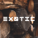 Jobs and Careers at Exotic Egypt