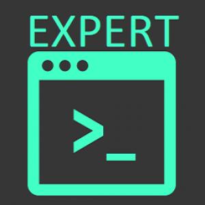 Expertssh Logo